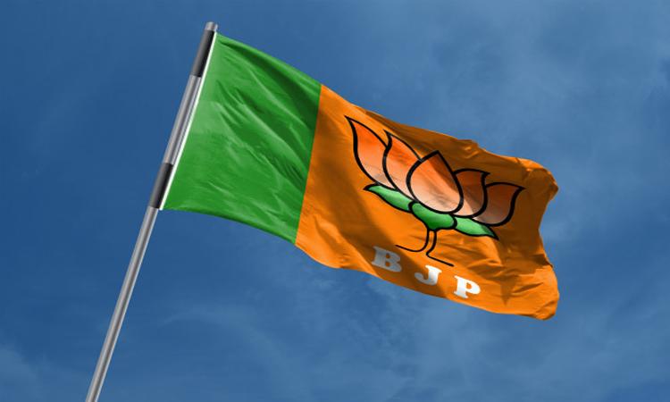 Bjp MP Candidates First List, బీజేపీ ఎంపీ అభ్యర్థుల తొలి జాబితా విడుదల
