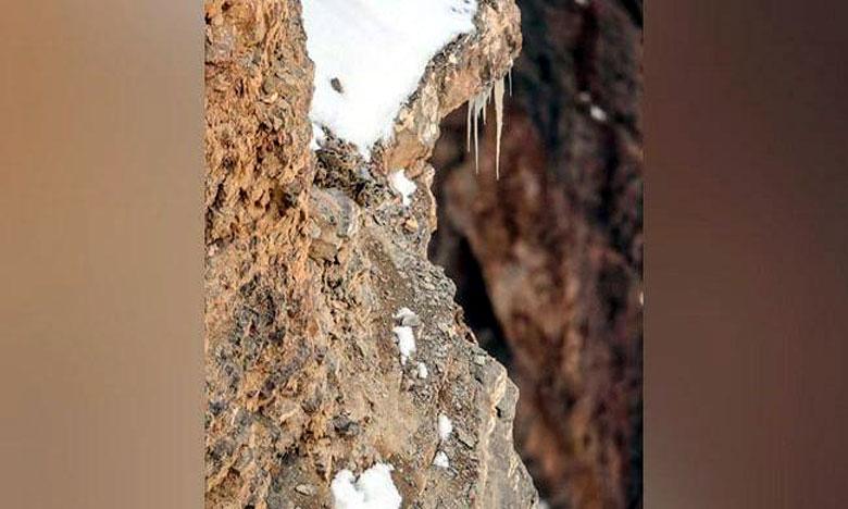 ఈ ఫొటోలో ఉన్న చిరుతను మీరు గుర్తు పట్టగలరా..!