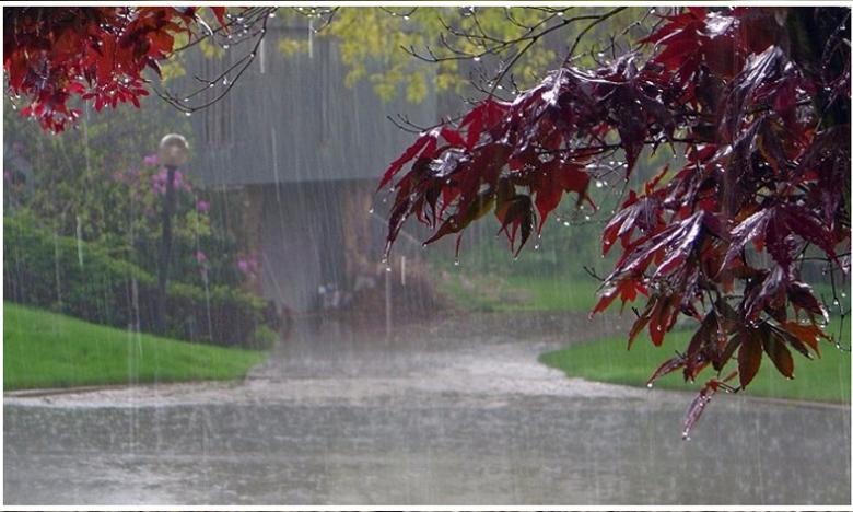Monsoon 2019, వానలు వచ్చేస్తున్నాయోచ్..!