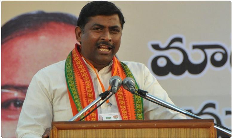 BJP Leader Muralidhar rao Sensational Comments on TRS Party, తెలంగాణ పాలిటిక్స్పై సంచలన కామెంట్స్ చేసిన బీజేపీ నేత మురళీధర్