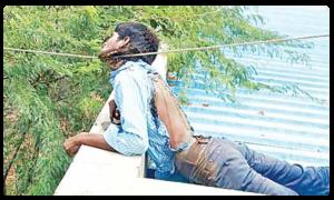 Man Died Due to Electric Shock at Anantapur, ఓ బిస్కెట్ ప్యాకెట్..కోతి..నిండు ప్రాణం!
