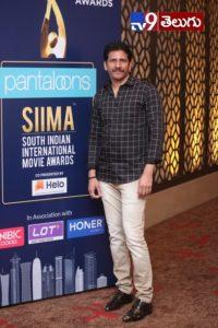Siima Awards 2019 Photos, సైమా అవార్డ్స్ 2019