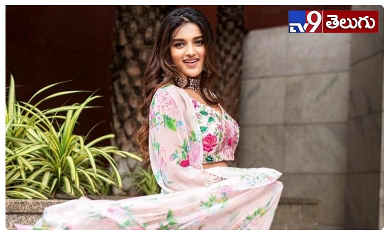 Nidhhi Agerwal, నిధి అగర్వాల్  న్యూ ఫొటోస్