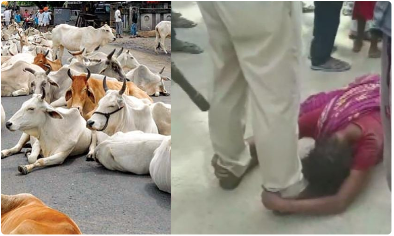 Three men thrashed to death stealing cattle Baniyapur village in Bihar, గోవులు తరలిస్తున్నారని ముగ్గురు హత్య.. బీహార్లో దారుణం