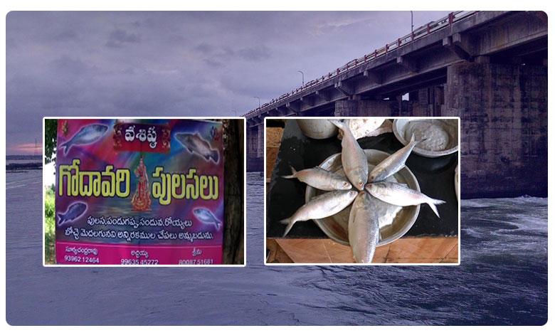 Godavari Very Costly Fish Pulasa, పుస్తెలమ్మినా..పులస దొరకనంటోంది..!