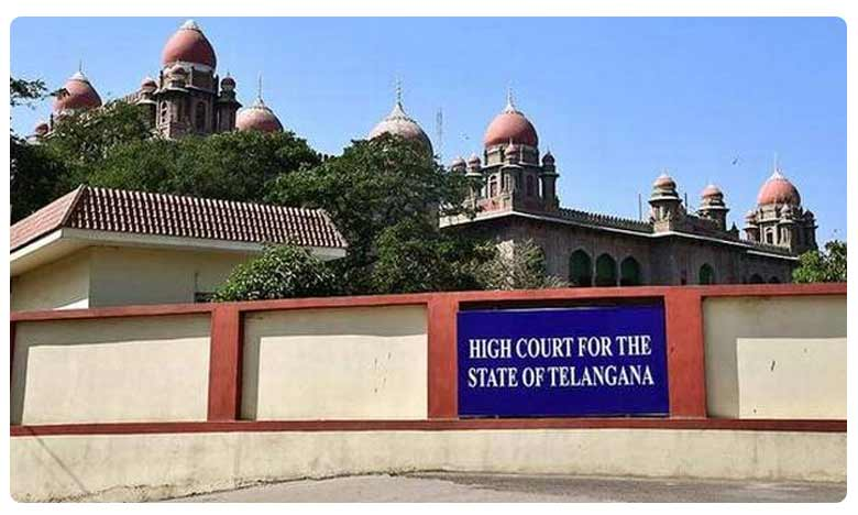 Telangana Municipal Elections Case in High Court