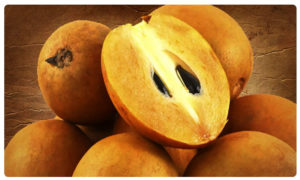 Five reasons to include chikoo in your diet