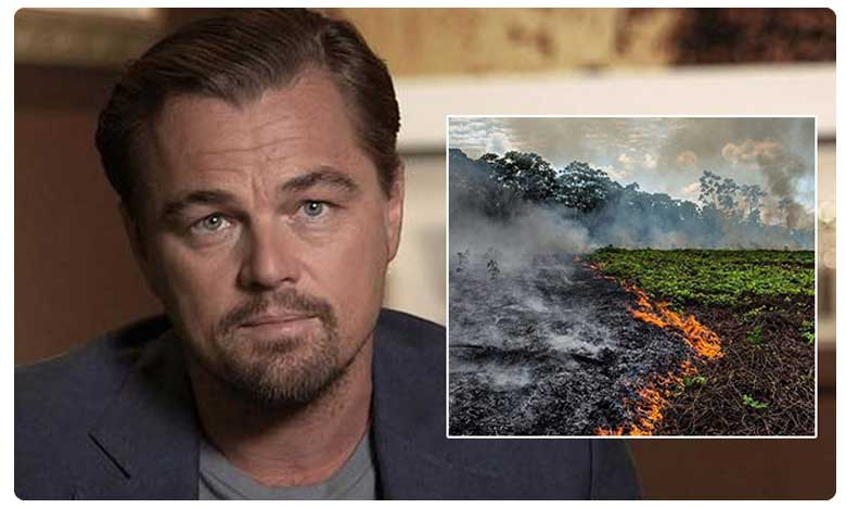 Leonardo DiCaprio to donate 5 million dollars for Amazon rainforest aid
