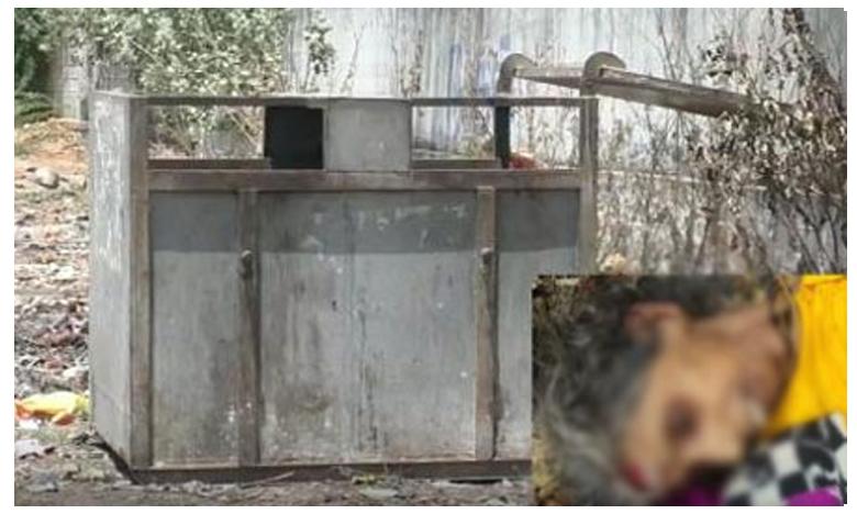 Mother dead body in the dustbin