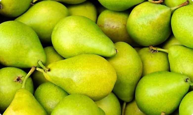 Monsoon Fruit pears