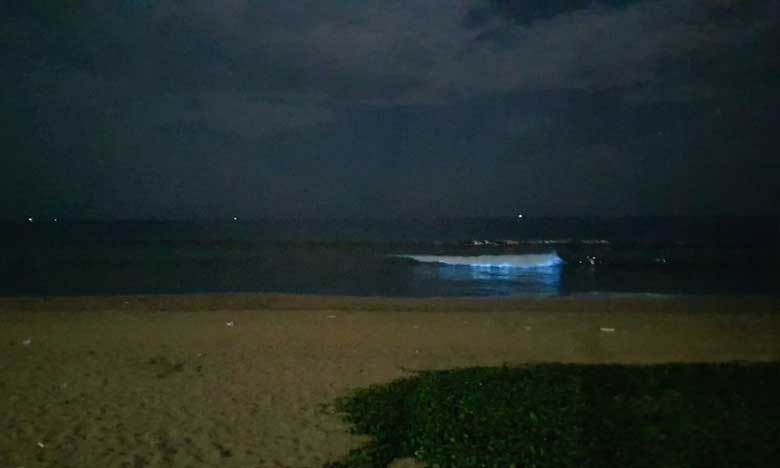 sparkling blue waves in chennai leave people in awe scientists curious, చెన్నై బీచ్ లో నీలి రంగు అలలు.. వాటే రేర్ వండర్ సీన్ !
