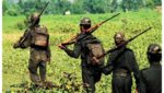 Maoist Action Team Search Operation In AOB Region