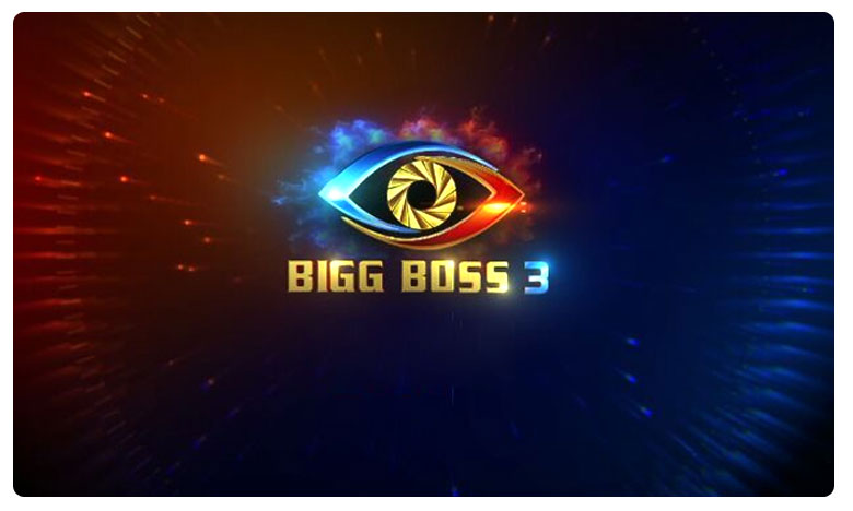 Bigg Boss 3: Are eliminations important for ratings?