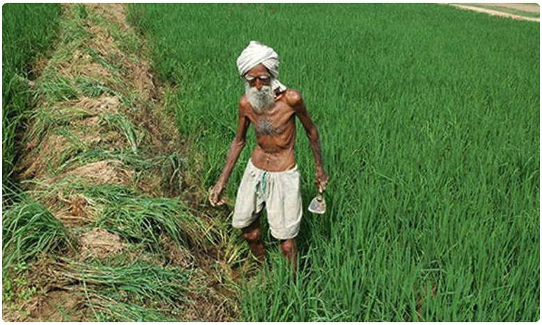 PM Modi to Launch Kisan Man Dhan Yojana Scheme: Here's All You Need to Know