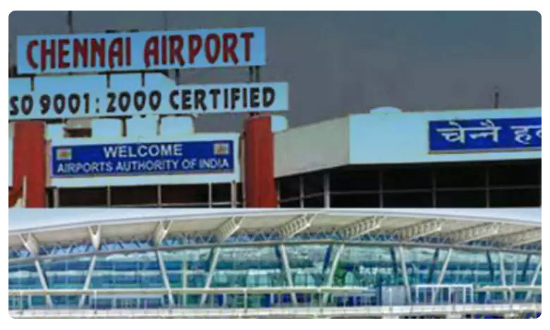 Shocking: pythons, reptiles seized from two passengers at Chennai airport