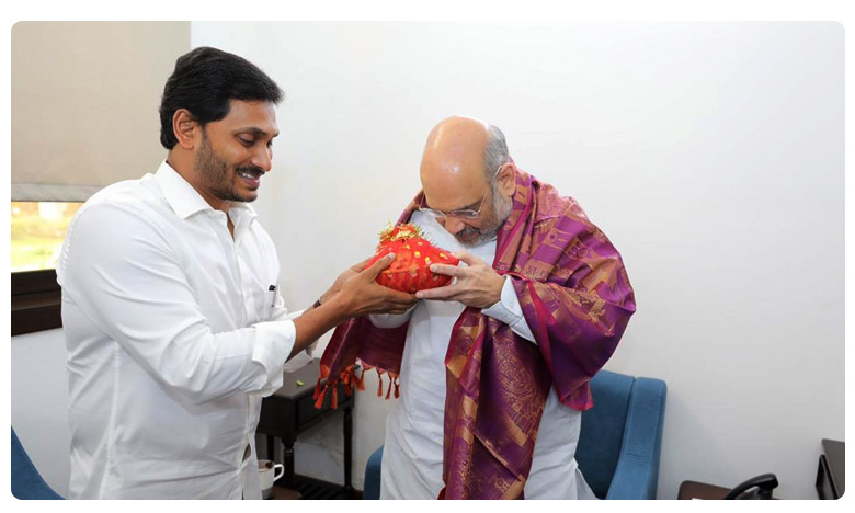 jagan amithshah meet delayed, జగన్-షా భేటీలో జాప్యం.. కారణమేంటో తెలుసా ?