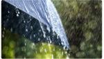Monsoon 2019: Heavy Rains Falling in Kurnool, వానలు మళ్లీ దంచికొడుతున్నాయి..!