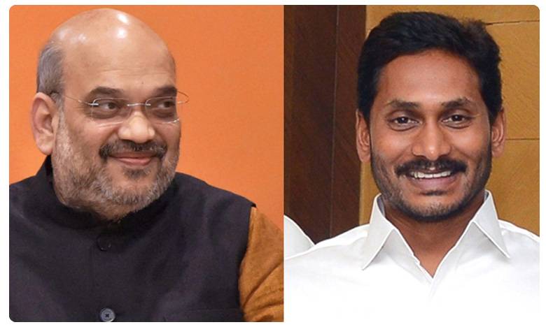 CM YS Jagan Mohan Reddy delhi tour, షాతో జగన్ కీలక భేటీ.. ఏం చర్చించబోతున్నారంటే..!