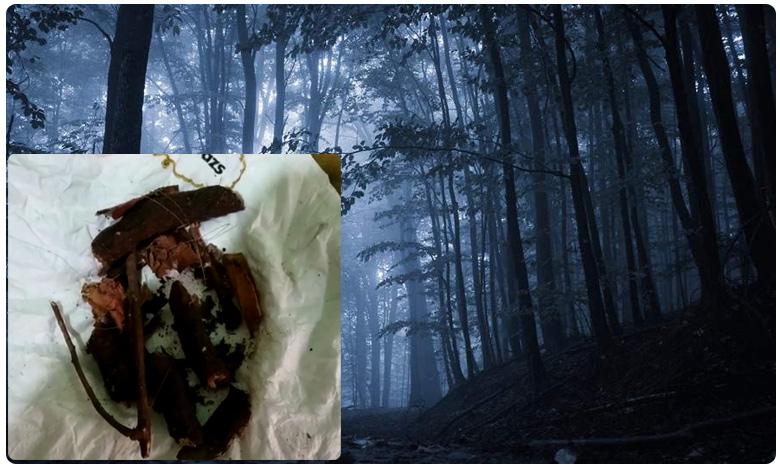 Mystery lighting in Manyam forest, మన్యంలో వింతకాంతులు..కెమెరాకు కూడా చిక్కడం లేదు.. ఏమిటీ మిస్టరీ..?