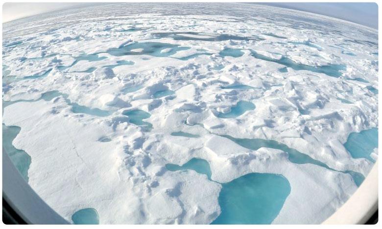 scientists declare a climate emergency warn of untold human suffering, ముంచుకొస్తున్న ముప్పు.. ' క్లైమేట్ ఎమర్జెన్సీ ' ప్రకటించిన శాస్త్రజ్ఞులు