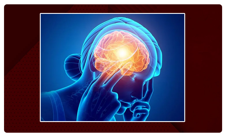 A migraine is a primary headache disorder, ఈ మెడిసిన్తో మైగ్రేన్ చిటికెలో మాయం..!
