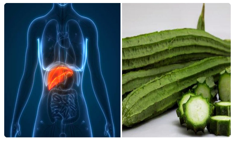 Luffa is a plant. When the mature fruit, మందుబాబుల్లో లివర్ వ్యాధులు ! బీరతోనే చెక్ !