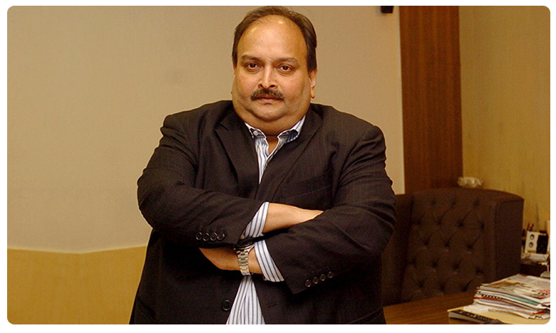 Court refuses to cancel warrant against Mehul Choksi, చోక్సీ అభ్యర్థనను తిరస్కరించిన స్పెషల్ కోర్ట్!