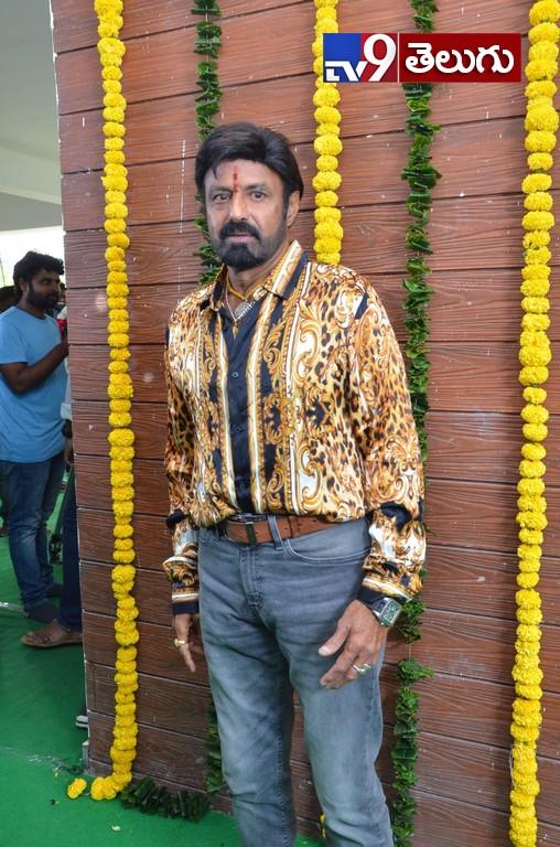 Mass Director Boyapati Srinu, నందమూరి బాలకృష్ణ  కొత్త చిత్రం ప్రారంభం