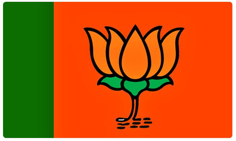 Political Party Donations, BJP Donations: కాషాయ పార్టీకి కరెన్సీ వెల్లువ.. రూ 742 కోట్లతో అందనంత ఎత్తున..