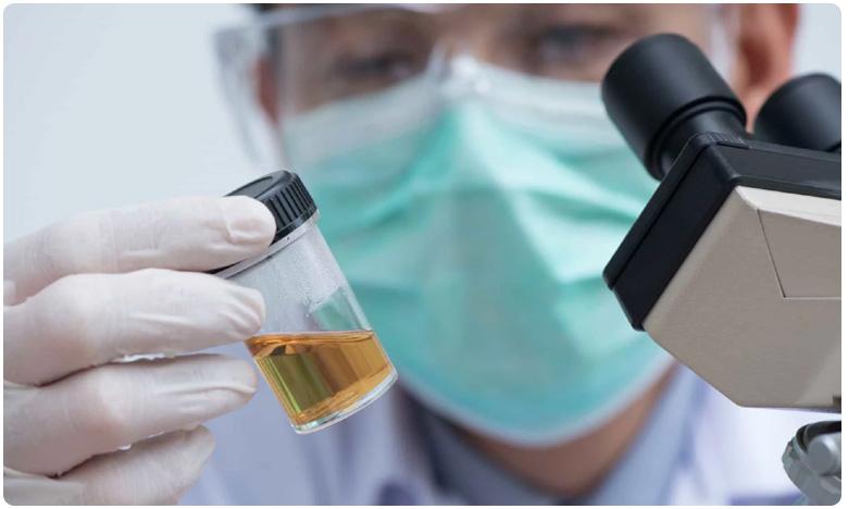 Woman urine turns into beer; A rare medical case found in America, ఇదేం విచిత్రం.. ఆమె కడుపే ఓ బీరు ఫ్యాక్టరీ.. ఆశ్యర్చపోతున్న వైద్యులు..!