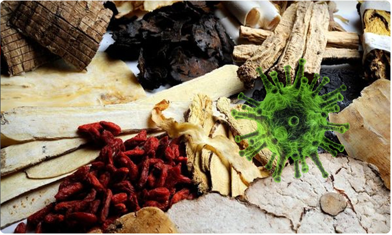chinese scintists using 2000 year old traditional remedies on corona patients, కరోనా రోగులకు ప్రాచీన 'ఆయుర్వేద చికిత్స'.. మూలికా వైద్యంతో శ్రీకారం